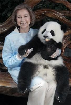 20070629_viaje__china_reyes_panda.jpg
