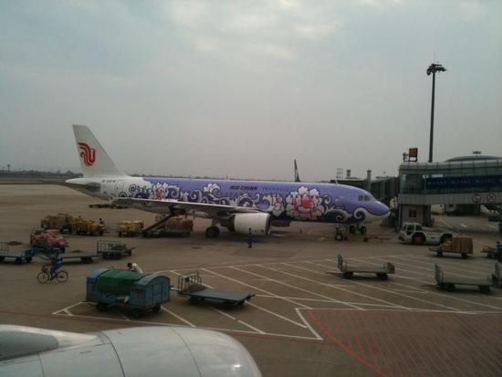 avion con vegetaciones.jpg