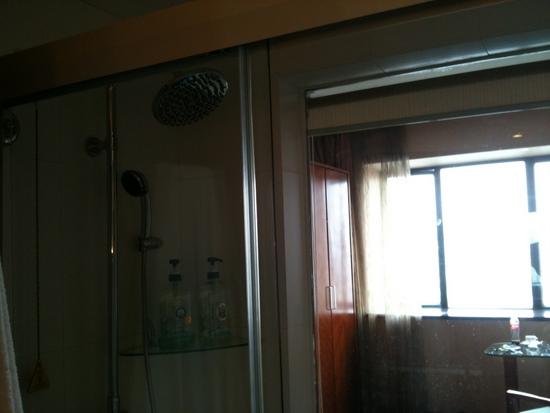 ducha con ventanal al saloncito.jpg